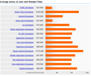 Application Developer Salary